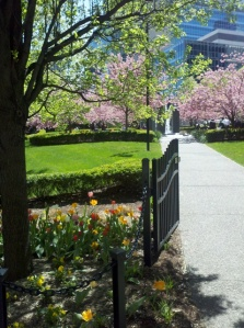 Amazingly, this pretty little park was once the home of an OccupyPittsburgh camp.